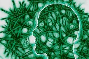 neural-pathways-221718_640